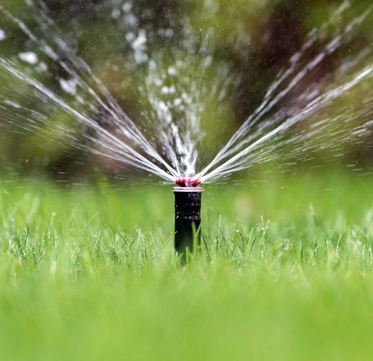 Evergreen Sprinkler & Irrigation Services